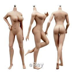 1/6 Male & Female Seamless Action Figure Model Fit Phicen TBLeague Hot Toys Head