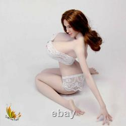 16 Scale Pale Skin Large Breast Big Bust Phicen UD 5.0 Female Figure Body Model