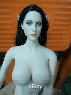 DIY 1/6 Scale Black Hair Female Figure Pale Head & S04B Body setModel